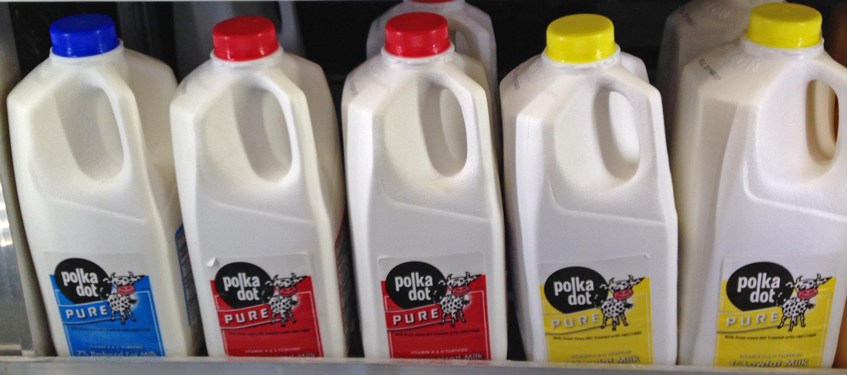 Polka Dot Half Gallon